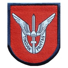 Formation Patch Para 10 brigade