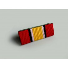 RIBBON MEDAL PPA